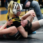 Saturday roundup: Sidney's Davis earns 2nd OHSWCA girls title