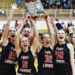 Girls basketball: Fort Loramie earns another state berth