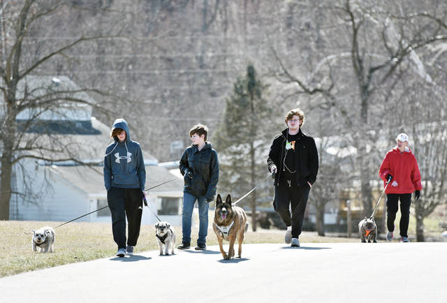 Walking dogs in Graceland Cemetery are brothers, left to right, Gavin Henry, 12, Hayes Henry, 11, and Jonathan Henry, 16, all of De Graff, with their grandpa Michael Henry, of Sidney, on Friday, March 5. Henry was walking Izzy which he said is one of the French bulldogs that was rescued from a house fire on March 26, 2019. He fostered Izzy and eventually adopted him. The other dogs are, left to right, miniature schnauzers Sarge and Simon and Belgian malinois, German shepherd mix Mika. Henry said Izzy is now very spoiled. The brothers are the children of Derek and Michelle Henry.