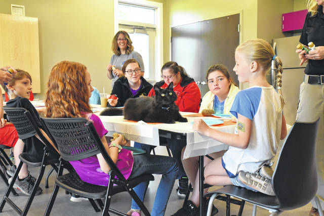"""Kids from around the area, aged 8-11 years old, learn responsible pet ownership at The Shelby County Animal Shelter Wednesday morning. """"Batman"""" the 7-plus year-old cat enjoys the attention as much as the kids do giving it. """"Batman"""" was a stray that adopted the animal shelter as his home seven years ago."""