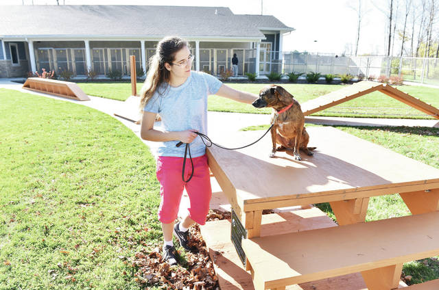 Girl Scout Troop 2083 member Kierstyn Oberdorf, of Sidney, daughter of Christine and Brian Helman and Larry Oberdorf Jr., pets a dog sitting on a piece of the agility course she designed for her Gold Award Project and presented to the Shelby County Animal Shelter.