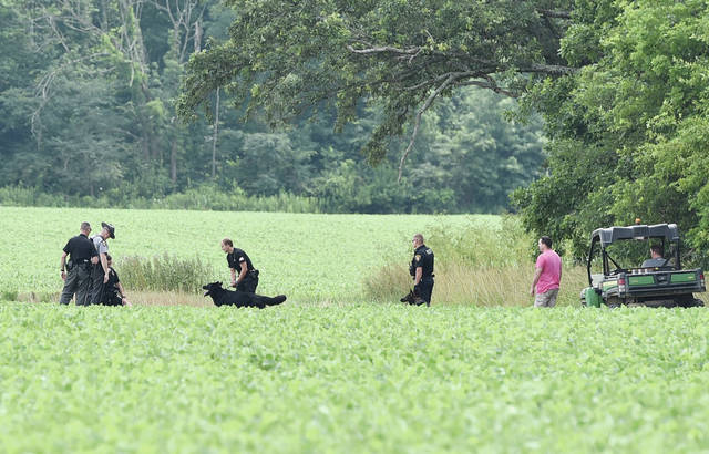 The suspect is arrested in a bean field.