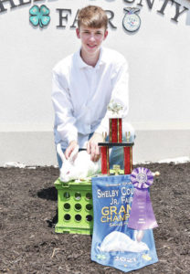 Grand and reserve champion fryers