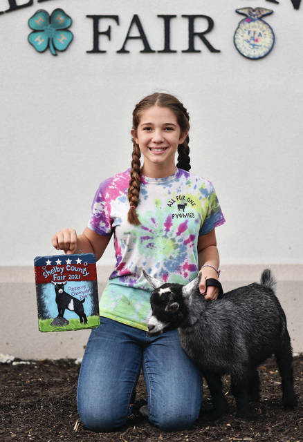 Successful member Malayna Verdier, 13, of Sidney, daughter of Mollie and Nathan Verdier, won pygmy goat reserve grand champion doe at the Shelby County Fair.