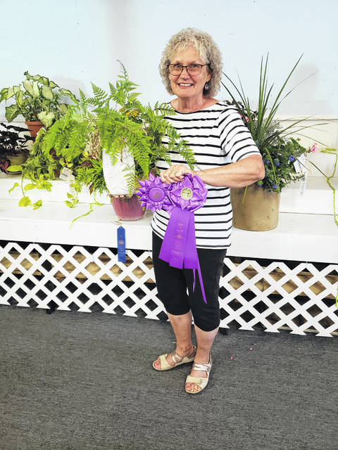Virginia Shaw won best in class as well as best in show for her rabbit foot fern at the 2021 Shelby County Fair flower show.