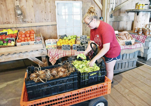 Courtney Diltz, of Tipp City, restocks hot banana peppers at Crossway Farms on Wednesday, Aug. 11. According to Diltz it is peak fruit and vegetable season right now. Ohio grown peaches are popular right now as are tomatoes and green beans.