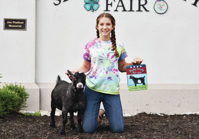 Successful 4-H member Malayna Verdier, 13, of Sidney, daughter of Mollie and Nathan Verdier, won reserve grand champion wether pygmy goat at the Shelby County Fair.
