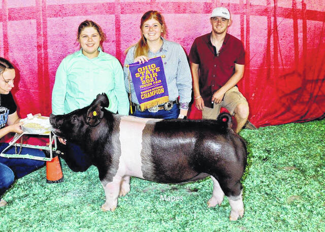 Megan Argabright, 19, daughter of Darren and Jennifer Argabright, of Jackson Center, had division winniing barrow at the 2021 Ohio State Fair. She is a member of McCartyville Producers. Argabright, center, is shown with her sistter, Marin, left, and brother, Evan, right.