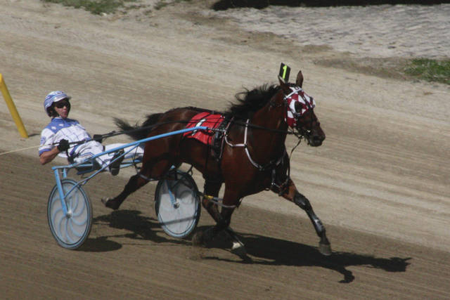 Photo: Bye Hanover (Chris Page) takes the $34,800 Standardbred for two-year-old filly pacers in 1:58 4/5.
