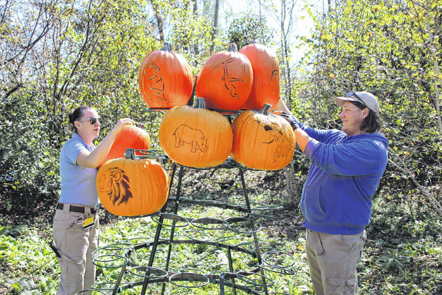 Columbus Zoo and Aquarium employees Chevy Griffin, left, and Beau Hurley build a pumpkin tree in Pumpkin Junction for the upcoming Boo at the Zoo. The annual Halloween celebration will be open the final weekend in October. Pumpkin Junction is located in the zoo's North America section.