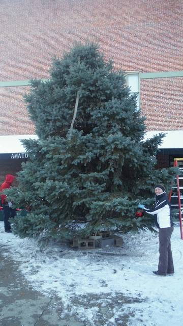 A past Christmas tree ready to be decorated and lit in downtown Delaware.