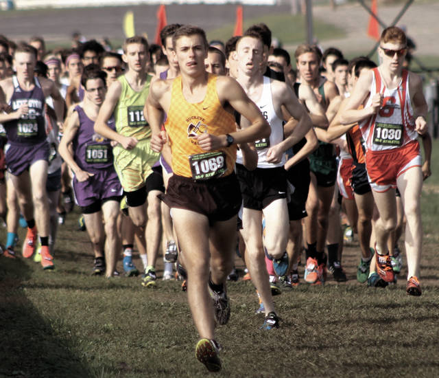 Buckeye Valley senior Zach Kreft leads the field during the early stages of Saturday's (Nov. 4) Division II state cross country championship race at National Trail Raceway.