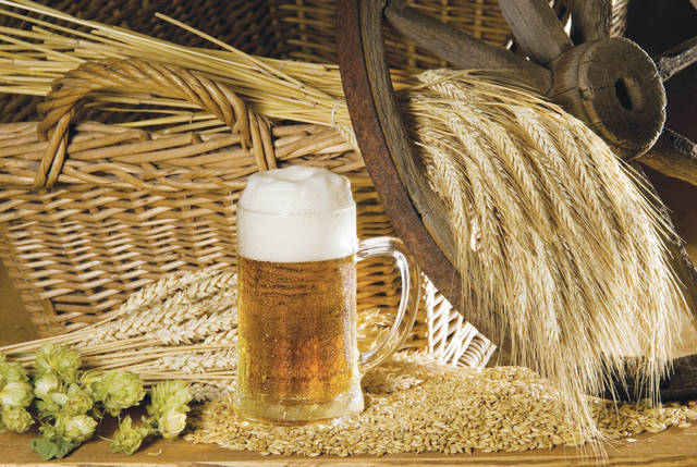 Farmers who want to tap into Ohio's surging craft brew industry now have a guidebook to help them grow a key ingredient: barley for malting. The number of acres planted in malting barley is on the rise, according to experts.