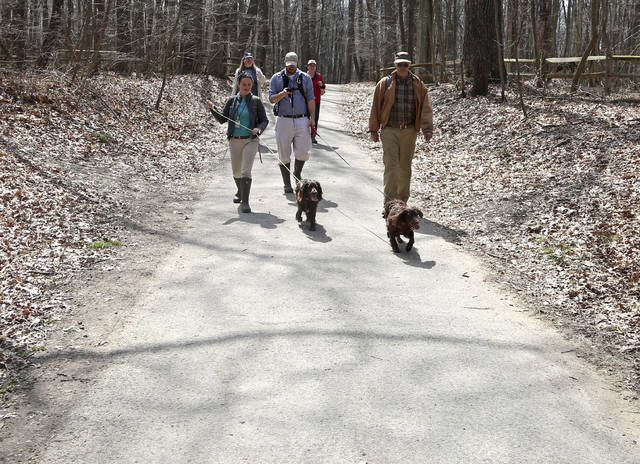In this Thursday, April 26, 2018 photo, the group is led by the dogs during the search for turtles at Wildwood Preserve Metropark in Toledo, Ohio. (Kurt Steiss/The Blade via AP)