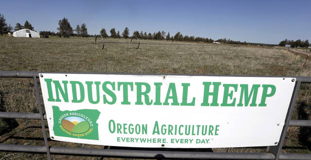FILE - In this April 23, 2018 file photo, a sign designates the type of crop grown in a field as it stands ready to plant another hemp crop for Big Top Farms near Sisters, Ore. Sens. Ron Wyden and Jeff Merkley on Tuesday, Jan. 15, 2019, urged the head of the U.S. Food and Drug Administration to update federal regulations to permit interstate commerce of food products containing a key non-psychoactive ingredient of cannabis. (AP Photo/Don Ryan, File)