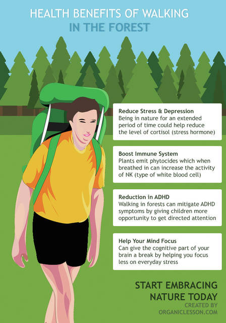 Taking a hike is good for you, physically and mentally.