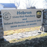Free fishing workshops offered