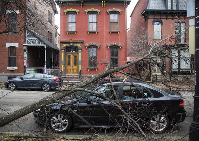 A tree downed by strong winds lays across the front of a vehicle parked on Beech Ave. Sunday, Feb. 24, 2019, on the North Side of Pittsburgh. (Jessie Wardarski/Pittsburgh Post-Gazette via AP)