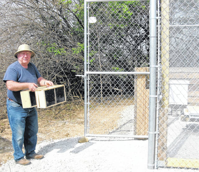 Submitted photos Greene County Beekeeper Bill Starrett works in the bee apiary at Russ Nature Reserve in Beavercreek.