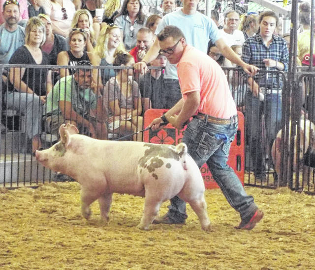 Dalton Bull won first in his class after the judge had him and his opponent do various showmanship tests, like exchanging utensils.