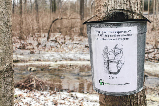 For $25, families can rent a sap bucket. They'll learn how to tap a maple tree and collect sap in a bucket labeled with their name. They'll also receive four tickets to the annual GCP&T pancake breakfast, which will be held 8:30-11:30 a.m. Saturday, March 2 at Russ Nature Reserve, 2380 Kemp Road, Beavercreek.