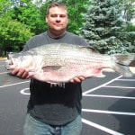 New Ohio record Hybrid Striped Bass certified