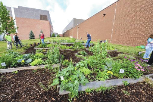 Submitted photo Students in Lisa Kenyon's Biology of Food class work in the student garden on campus.