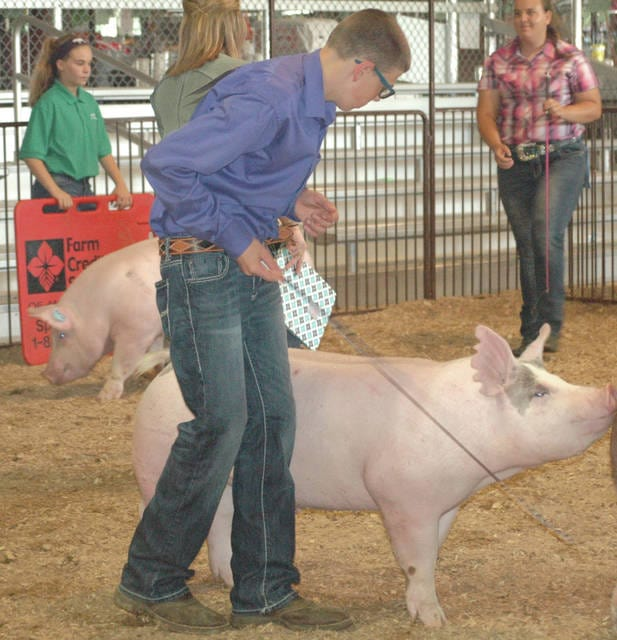 Kaden Cline drives his hog during that portion of the Showman of Showmen competition.