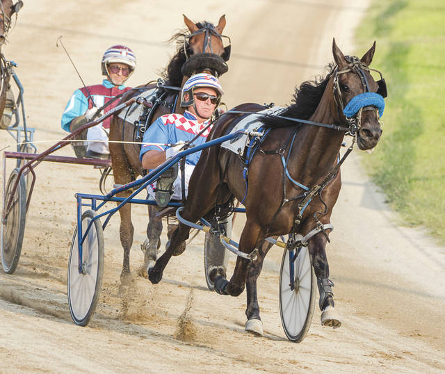 Driver Hugh Beatty leads the horse Tipp City around the turn in Wednesday's second harness race, Aug. 2 at the Greene County Fair. Beatty and Tipp City claimed the win in the 1st- division race for 2-year-old Fillies.