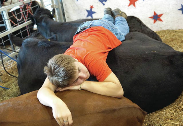 Barb Slone | Greene County News The Greene County Fair grounds were full of kids ready to ride rides. While other youth decided to take a nap with the cows as they awaited their turn to show.