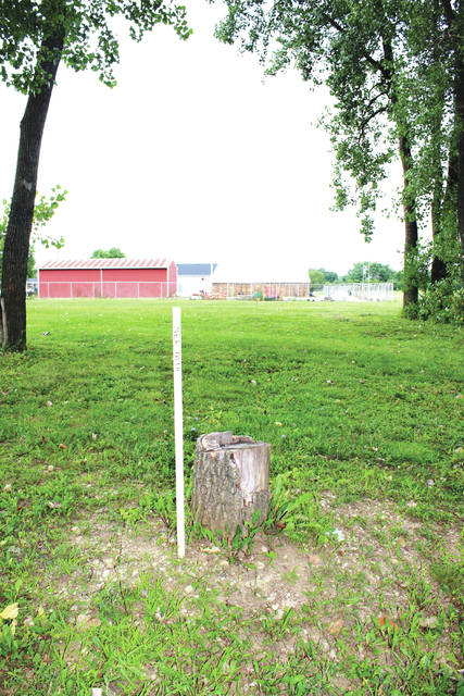 Tree stump blocking proposed replacement path will be removed.
