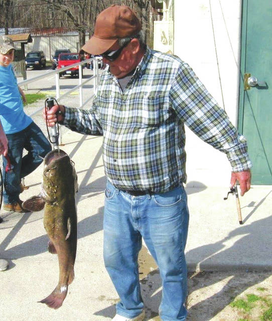 "Ray Hale holds ""Old Whiskers,"" a giant catfish that had been caught and released in Spring Lakes Park in 2014. ""Old Whiskers"" and several other large fish are said to be in the park's pond for the Greene County Parks & Trails adult fishing derby, to be held from 8-10 a.m. Saturday, June 16 in Bellbrook."