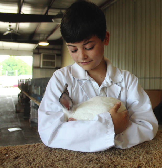 Anna Bolton | Greene County News Aidan Fermier holds his Californian rabbit in between shows July 30.