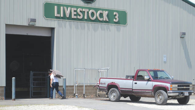 Individuals preparing barns where their livestock will live over the following days.