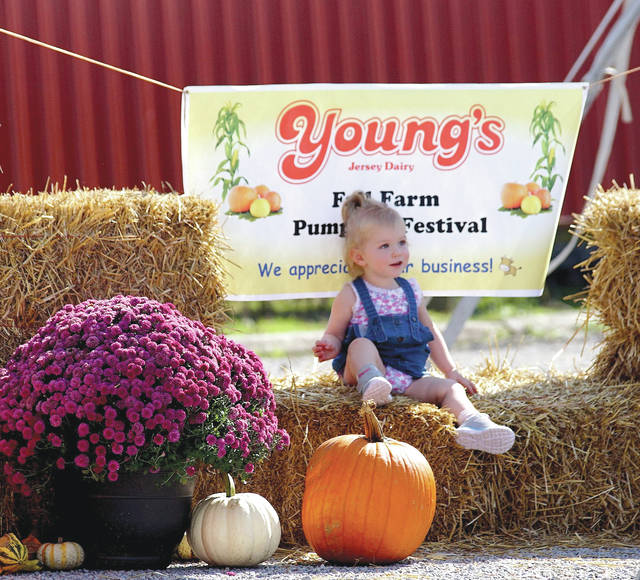 Barb Slone | Greene County News Young's Jersey Dairy hosted the 42nd Annual Fall Farm Pumpkin Festival Oct. 6-7, inviting local families to enjoy pumpkins galore in addition to a number of other seasonal activities, such as a corn maze, sweet treats, a wagon ride and more.