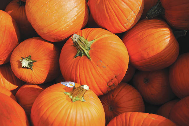 Whitney Vickers | Greene County News Tudor's Biscuit World will host pumpkin painting for children aged 3-12 Monday, Oct. 21 and Tuesday, Oct. 22 for dine-in customers.