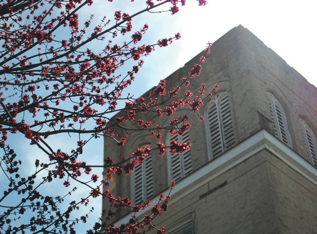 Whitney Vickers | Greene County News The City of Fairborn is abound with signs of spring. Pictured is a tree beginning to bloom in front of the Fairborn United Methodist Church.