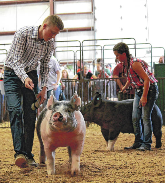 File photos The Greene County Fair Board, in consultation with Greene County Public Health and in accordance with state guidelines concerning COVID-19, will make a decision June 15 about whether, and how, to host a fair this 2020 season. Pictured, youth enjoy the 2019 Greene County Fair.
