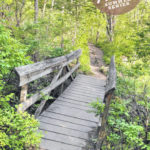 Hike the 'Great Ohio Outback Wilderness'