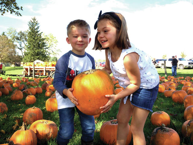 Cody Willoughby | AIM Media Adelayde and Hamilton Barnhart, ages 6 and 5, of Tipp City, make a selection from the pumpkin patch at Fall Farm Fest in Troy last weekend.