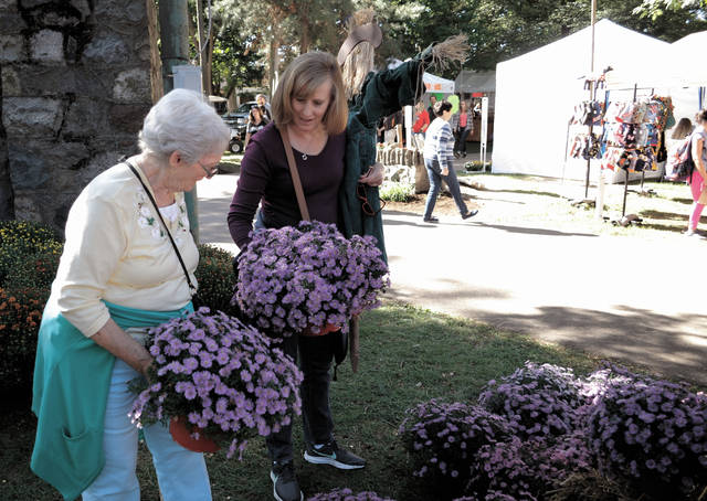 Cecilia Fox | AIM Media Midwest Susan Webb and her mother Barbara McKenzie of Medway checked out the array of flowers at the Andy's Garden display at this year's Mum Festival.