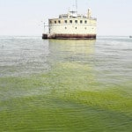 Toledo detects Lake Erie toxins that led to 2014 crisis