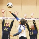 Volleyball capsule previews