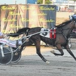 Harness racing returns to fair for 2 nights