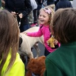 Photos: Blessing of the Pets in Ottawa