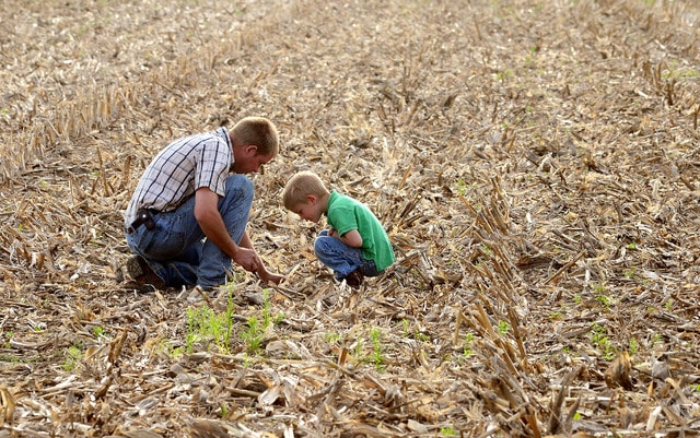 Albert Bear, of Elida, and his son Kaden, 4, check the soil depth of soybean seeds while planting 9 acres of farm ground near Agerter and Grubb Roads in May.