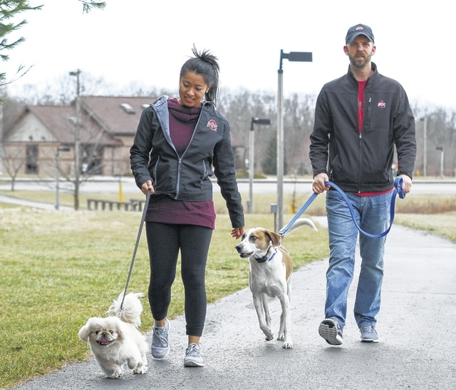 Mary Singinan and Kyle Anderson walk their dogs along the Ottawa Metro bike path Friday afternoon.