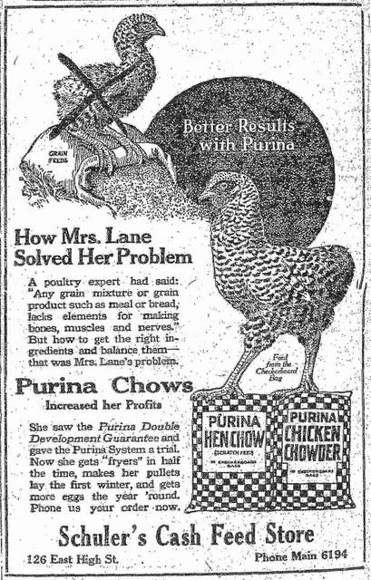 A newspaper ad from 1921 promotes Purina Chicken Chowder for healthier chickens. At that time, many were raising chickens in their backyards to supplement their dinner tables.