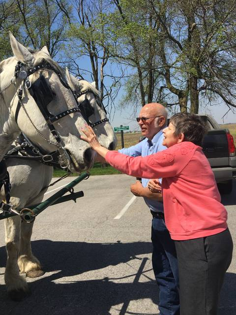 Matt Thuman, Wapakoneta | Submitted photo Resident Jenny Anderson pets the horses before the buggy leaves Auglaize Acres. Share your photos at http://j.mp/limaphotos.