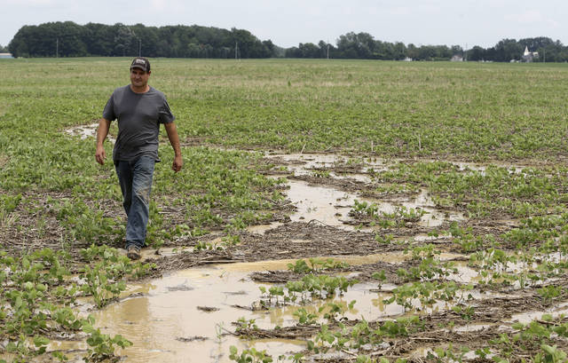 Doug Phenicie, who farms about 1,800 acres in northern Ohio, walks across a flooded soybean field Wednesday in New Washington. The company that developed the Dakota Access oil pipeline is entangled in another fight, this time in Ohio where work on its multi-state natural gas pipeline has wrecked wetlands, flooded farm fields and flattened a 170-year-old farmhouse.